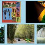 Memories of Jamaica Online Event